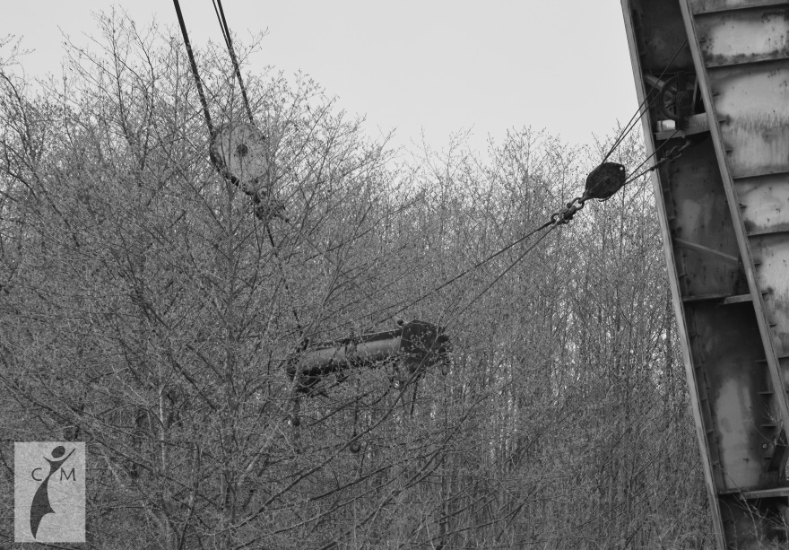 Rusting Crane on the Snohomish River