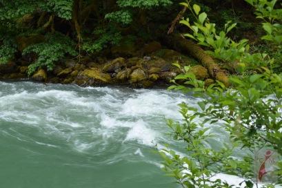 Skagit River in Washington