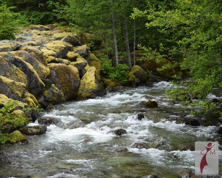 Skagit River with boulders and trees