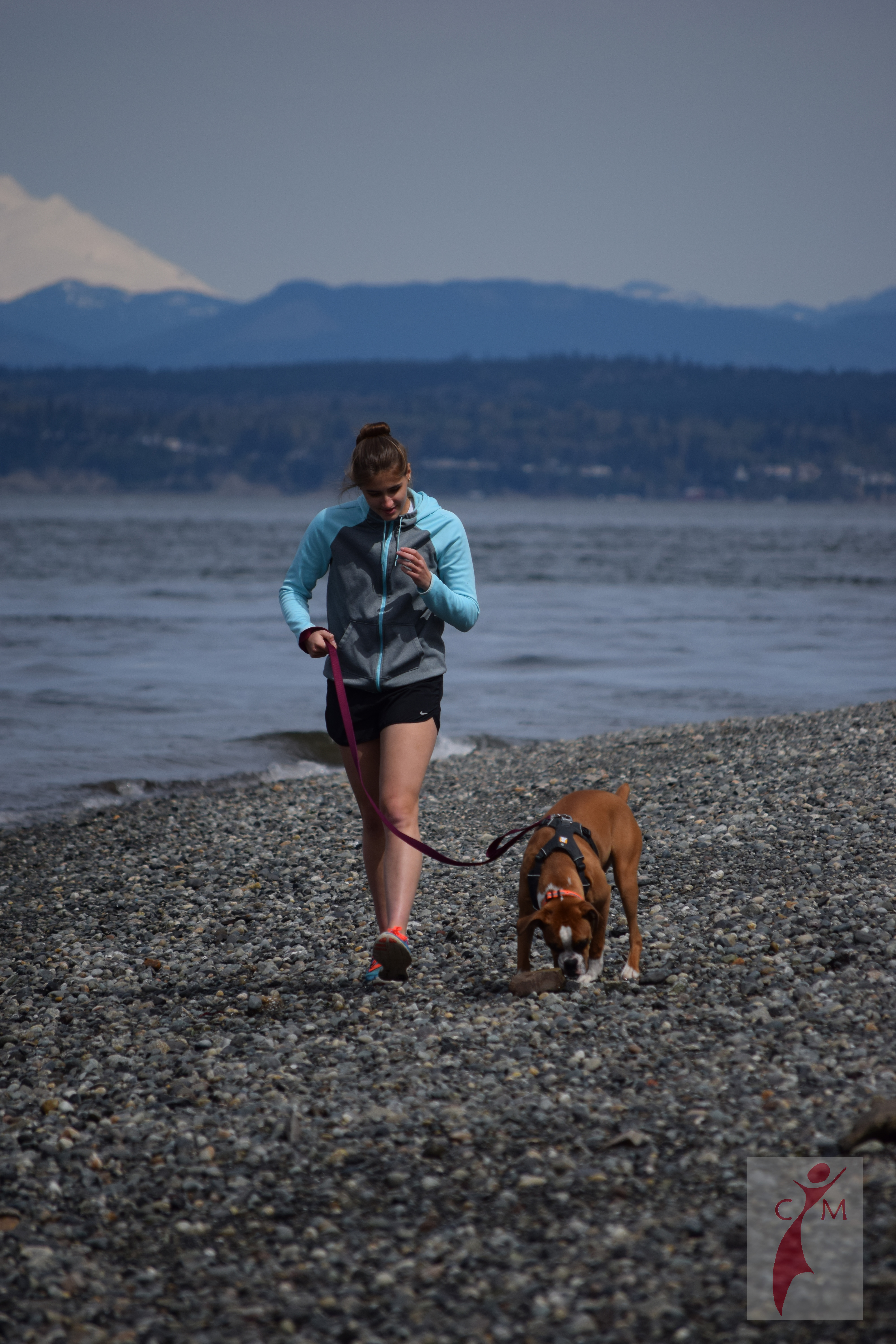 Girl and Boxer dog walking on the beach
