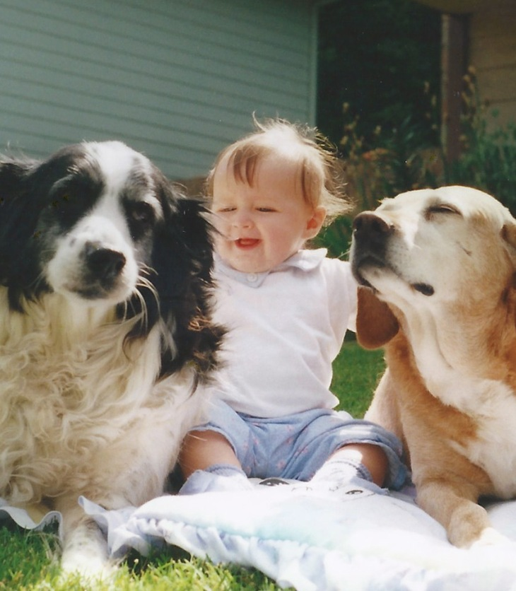 Toddler with two dogs