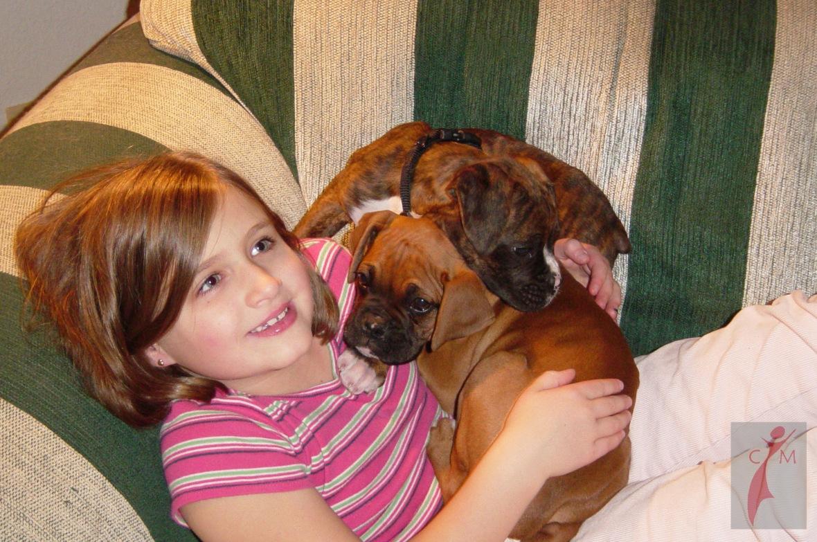 Girl and boxer pups sleeping on a sofa